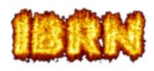iBRN logo
