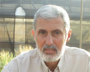 Kmal Nashef